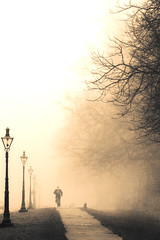 Through the Park (Paul O' Connell) Tags: park november trees ireland winter dublin mist cold lamp phoenix bike fog season europe track alone path foggy eire dew cycle chilly abyss erry pauloconnell irelanda abigfave topofthefog wwwpocphotographycom pocphotography