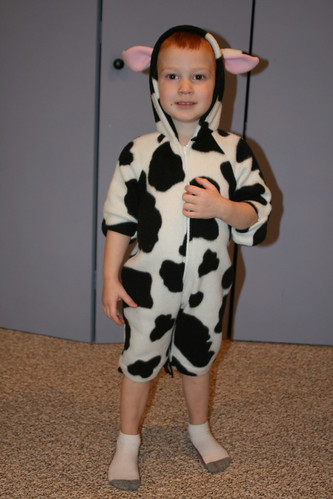 A Little Cow