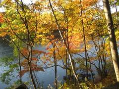 Rockefeller Preserve - Swan Lake with fall foliage (ruthmarie.hicks) Tags: fallfoliage sleepyhollow rockefellerpreserve