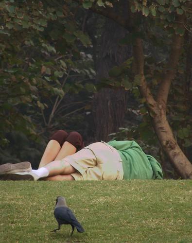 Indian Park Hidden Mms Free Sex