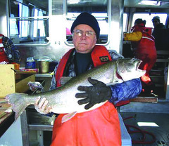 Fish biologist Rick Goetz aboard the research vessel Lake Char with a large siscowet caught in Lake Superior  ~courtesy Rick Goetz