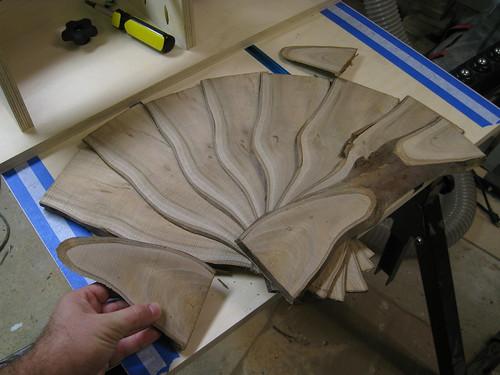 Eucalyptus slices