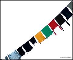 (viziofotografia) Tags: miscellaneous washing clothespeg bucato pannistesi mollette atestaingiù creativeshots misticanza scatticreativi viziofotografia