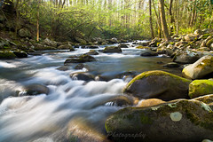 Little Pigeon River (John Cothron) Tags: usa nature water creek river spring stream outdoor tennessee flowing gatlinburg freshwater seviercounty littlepigeonriver greatsmokymountainnationalpark porterscreektrail johncothron cothronphotography 2jtrip2010