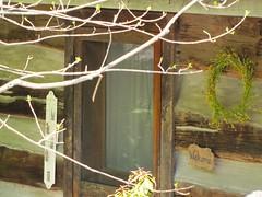 Inn at Cedar Falls 12