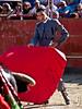 Iván Vicente (FJimenez92) Tags: festival toros bullfight elescorial pablolechuga ivanvicente sergioaguilar adolforamos victorpuerto