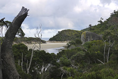 WilsonsProm_05 (djtbay) Tags: river tidal wilsons promontory