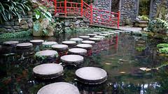 Japanese garden (/Naakka) Tags: garden japanese steppingstones monte madeira montepalacetropicalgarden