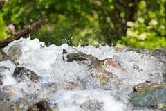 Dancing Drops 1 (ruprechtl) Tags: austria tirol sterreich wasser hiking bach alm wandern tyrol wassertropfen tropfen voldertal vorbergalm