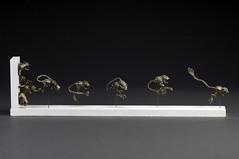 Kangaroo Rat Race (Art of Lann) Tags: sculpture wildlife metals kangaroorats whitebronze