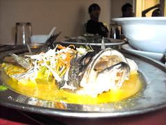 DSCF0324 (Dayu Designs) Tags: restaurant makan chenghochengho lunchchengho