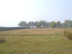 Bodh Gaya land    from outside gatest