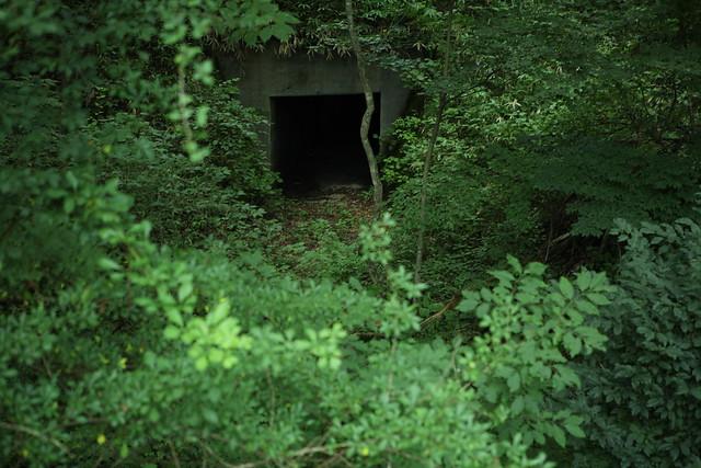 林間のトンネル