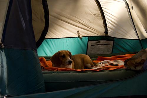 Lake basing Camping