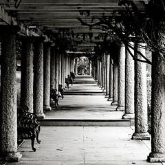 Pillars of Maymont