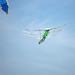 Drachenfest Grün80