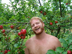 me and the apples 2 (redjoe) Tags: breakfast outdoors bed vermont meadow frog redjoe joehorvath