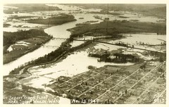 Skagit River Flood - November 28th, 1949 ~ Near Sedro-Woolley, WASH ~ J Boyd Ellis Photo ~ Vintage Postcard (brettbigb) Tags: county usa history vintage john cards j us washington post image flood ellis postcard images wash card vintagepostcard postcards co wa historical skagit boyd wn woolley sedrowoolley sedro vintagepostcards rppc realphoto jboydellis brettcsandstromcollection november28th1949 sedrowoolleyisatimemachine thesandstromresetarcollection