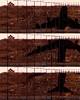 A shadow of itself (pho_kus) Tags: anawesomeshot goldstaraward