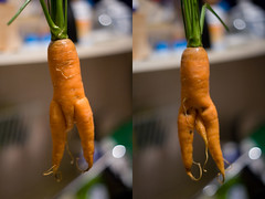 288/365 Perverted Carrot! (IrishNYC) Tags: male strange naked nude penis weird blog funny bokeh tripod butt fresh odd carrot produce carrots omg eater xrated perverted wellhung project365 buttless