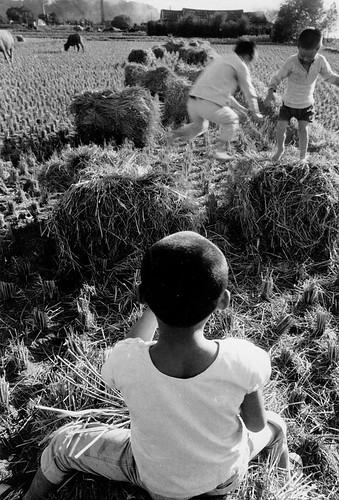 黑白童年-雀躍