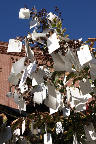 """""""Wish Tree for Pasadena"""" by Yoko Ono at One Colorado Courtyard, 11-06-08 - 13 by you."""