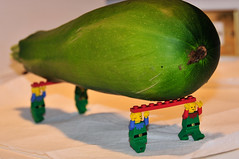 Giant Zucchini carried by lego men