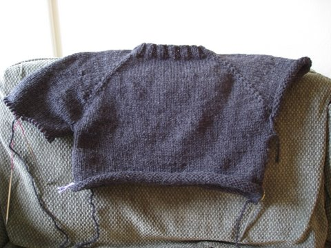 Men's Top Down Raglan WIP