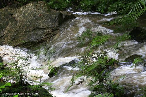 waterflow copy