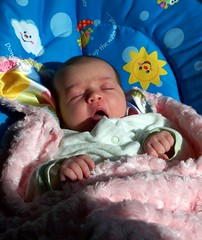 Liesl Yawning in the Morning Sun