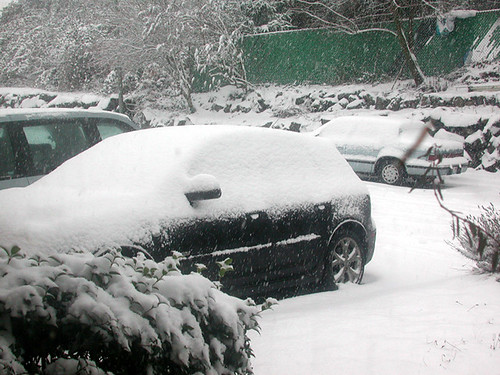 Snow, 12-18-08