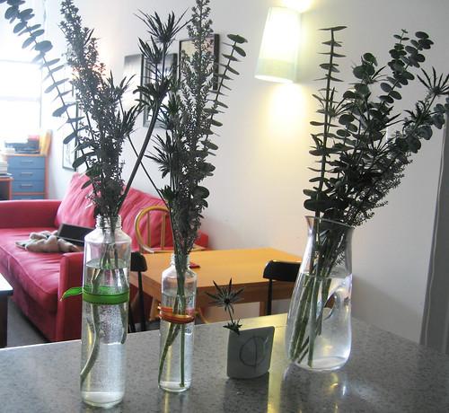 Hanukkah 08 - flowers