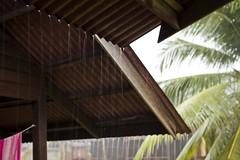 5.5.11 (obo-bobolina) Tags: storm rain may malaysia 365 cherating 2011 project365