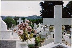. (amanda. m. jansson.) Tags: flowers cemetery graveyard analog 35mm walking dead death cross mourning zombie secret horizon apocalypse ceremony calm spirits greece silence bones ghosts serene sparta hiding sanatorium staring occult tombstones lament antichrist nightofthelivingdead filmphotography prakticalb2 moans