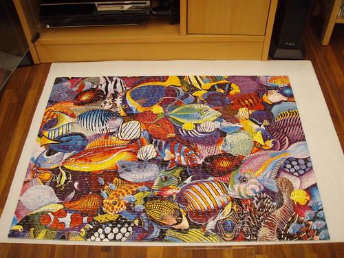 8th puzzle (1000 pieces)
