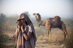 Morning dew. (Swiatoslaw Wojtkowiak) Tags: woman india canon asia market indian fair camel 5d nomad indien rajasthan inde mela  3932 5photosaday    beneshwar