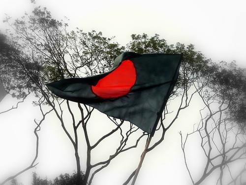 My Flag (by ~KaKTaRuA~)