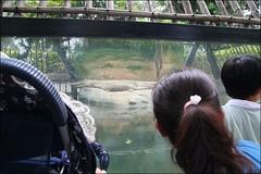 新竹市立動物園25