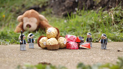 28 April 2008 - Day 125: FGR goes W i d e s c r e e n (Michael-A) Tags: grass monkey chocolate widescreen roulette chewbacca rebels ferrerorocher fgr nikond40