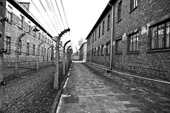 Auschwitz (DTP David Thompson Photography) Tags: camp blackandwhite bw concentration emotion rip hell poland torture rememberance neverforget auschwitz slaves concentrationcamp rememberthem 1785mmisusm canon400d
