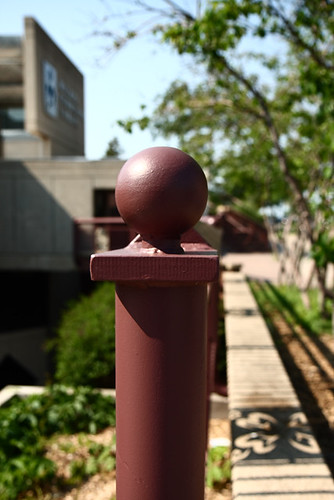 Fence Post Perspective 6751