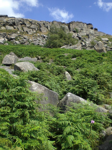 Stanage crag, taken from the plantation