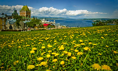 Quebec City View (Ren Ehrhardt) Tags: old city travel flowers urban canada travelling green tourism lamp field horizontal architecture america buildings river landscape photography hotel town lawrence bed inn stream exterior view post quebec lodging board north sightseeing platform meadows cities places landmark tourist tourists historic lodge destination historical quebeccity chateau popular province sights attraction dandelions attractions vieux sites accomodations frontenac staint 2star
