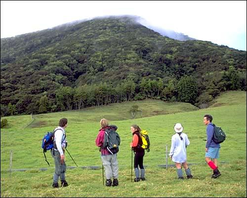 Actividades en bosques y senderos en Hawái