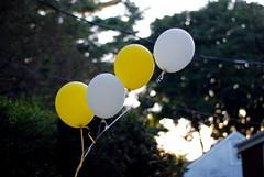 Balloons & Bokeh