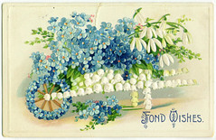 Vintage greetings card (* angelandim *) Tags: flowers flores card oldpostcards vintagegreetingcards oldcards flowerspostcards postaisantigoscomflores