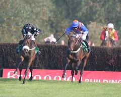 馬にムチを入れる競馬の風景