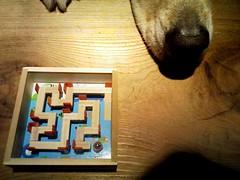 パズルとムーちゃん