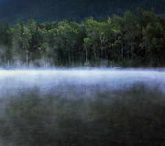 places where the world grows thin (manyfires) Tags: morning mist lake film fog montana glaciernationalpark nikonfm lakemcdonald farpla