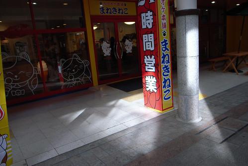 nagano light and shade 2